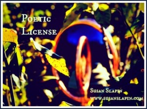 BLUEPoetic licensesmallwebDSC_0086_2