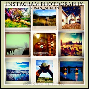 INSTAGRAM-web-PicMonkey-Collage